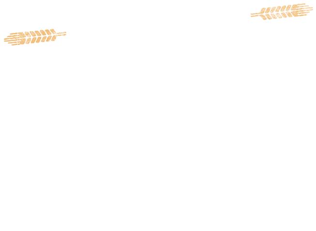 Four Reasons Your Website Isn't Generating Results