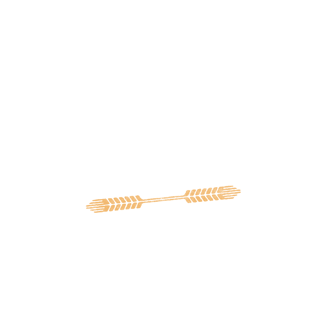 A Focus on Design